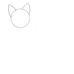 dibujo gato 1
