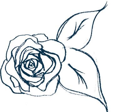 Cómo Dibujar Una Rosa Paso A Paso Y Muy Fácil 2019