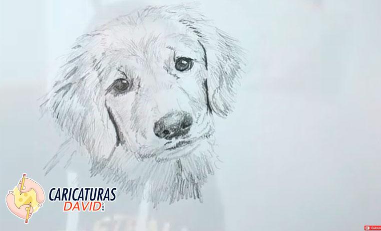 dibujar perro a lapiz